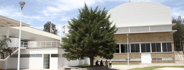Gimnasio de Usos Múltiples is one of Instalaciones / Venues.