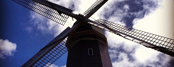 Murphy Windmill is one of SF.