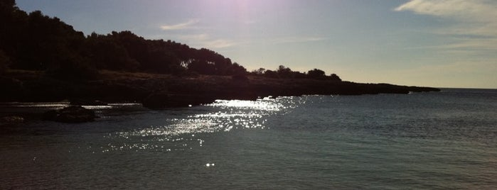 Porto Selvaggio is one of ITALY BEACHES.