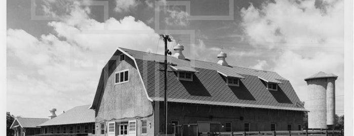 TTU - Dairy Barn is one of Hidden Treasure Campus Tour.