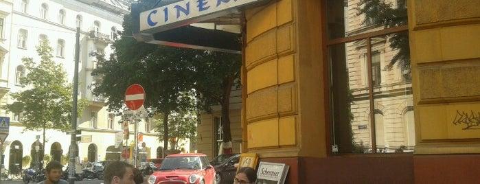 Top Kino is one of bar.