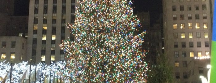 Rockefeller Center Christmas Tree is one of Tourist Tips: Manhattan in a Day.