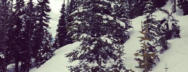 Gondola @ Jackson Hole Mountain Resort is one of Jackson Hole.