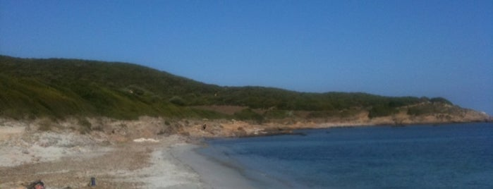 Plage De Tamarone is one of Corsica.