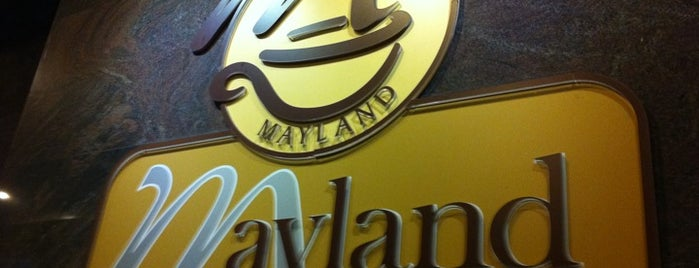 Mayland Coffee House (Imperial Palace Hotel) is one of like.