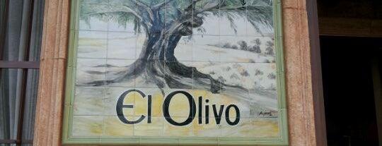 El Olivo is one of Donde comer y dormir en cordoba.