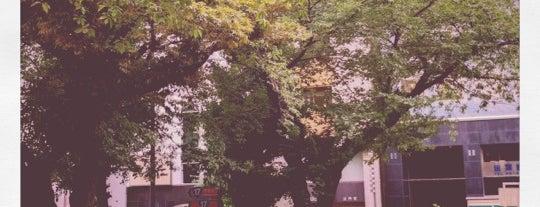 お茶の水公園 is one of 公園.