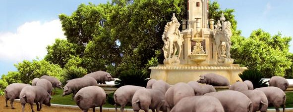 Ibéricos Luceros is one of los mejores sitios para comer en Alicante.