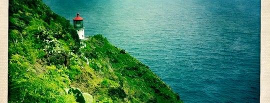 Makapu'u Lighthouse is one of Honolulu to-do-lisy.