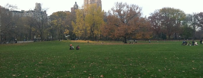 Sheep Meadow - Central Park is one of NYC to do.