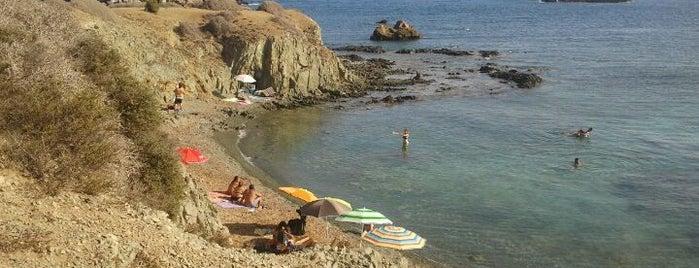 Illa Tabarca | Isla de Tabarca is one of Alicante urban treasures.