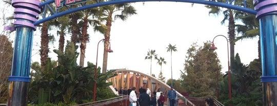 Walt Disney World Parks