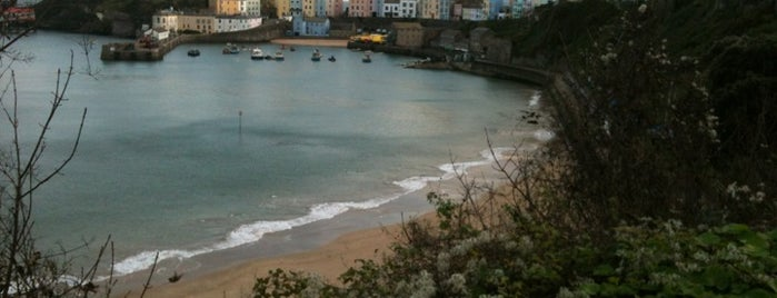 Tenby Beach is one of Shelbyart's Favourite Places.