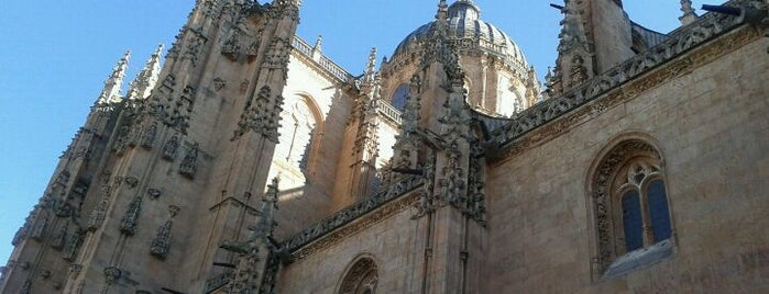 Catedral de Salamanca is one of Catedrales de España / Cathedrals of Spain.