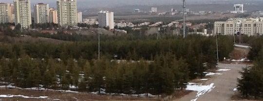 Bilkent Üniversitesi is one of BURSASPOR 4sq.