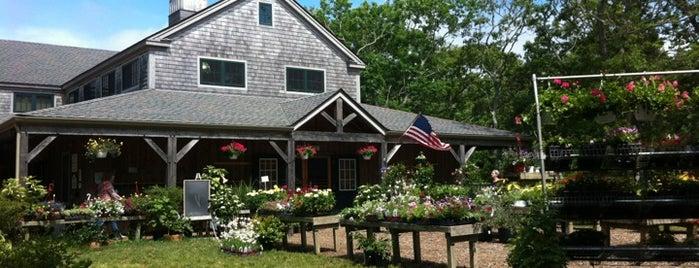 Morning Glory Farm is one of Martha's Vineyard.