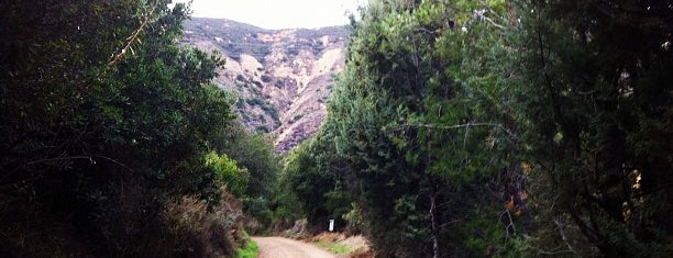 Black Star Canyon Road is one of Hiking Trails in Orange County.
