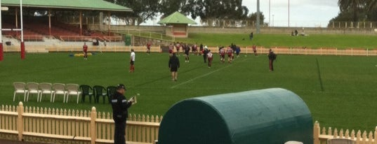 North Sydney Oval is one of Soccer.
