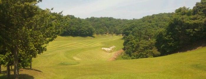 ゴルフ倶楽部セブンレイクス is one of ゴルフ場(茨城).