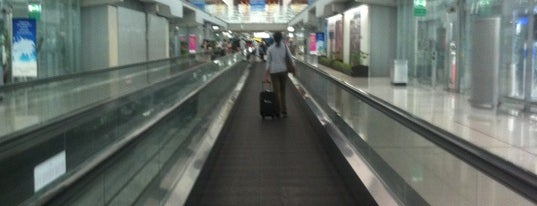 Gate E7 is one of TH-Airport-BKK-1.