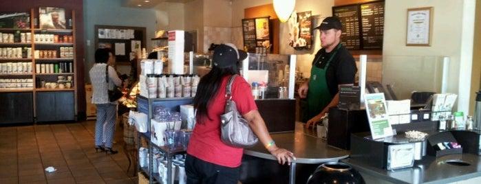 Starbucks is one of Day Activities.