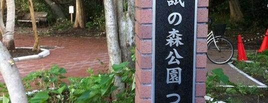 林試の森公園 つくし門 is one of 公園.