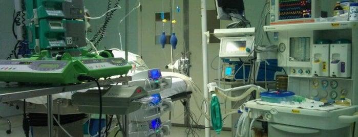 Hospital Meridional is one of Hospitais.