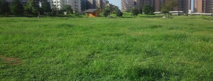 明海の丘公園 is one of 新浦安周辺の公園.