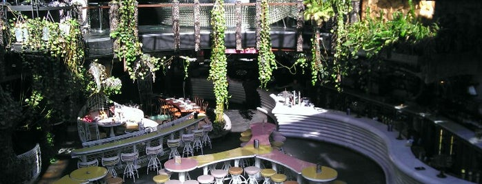 Cloudland is one of Ben's Top 10 favourites places in Brisbane.