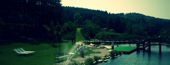 Naturbad Bernstein is one of das schwimmwasser.
