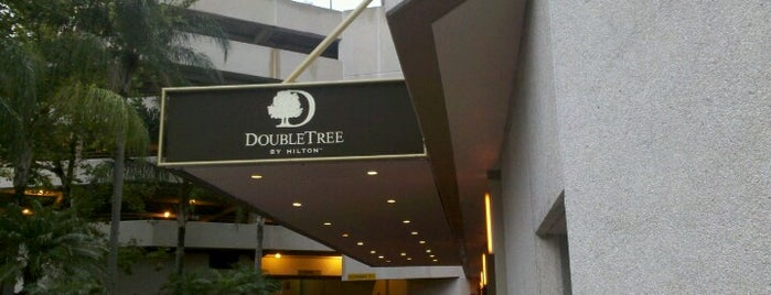 DoubleTree by Hilton Orlando Downtown is one of around the country.