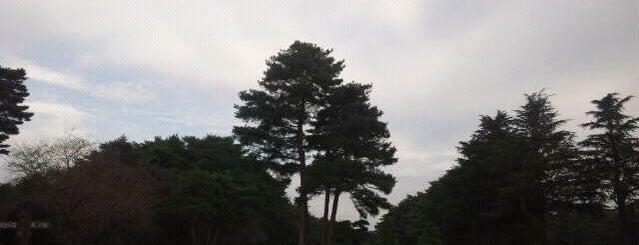 江戸崎カントリー倶楽部 is one of ゴルフ場(茨城).