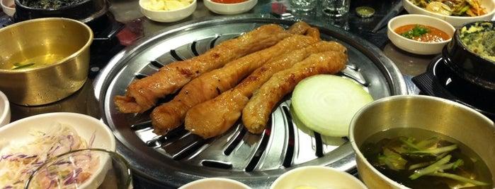 동갈매기 is one of food.