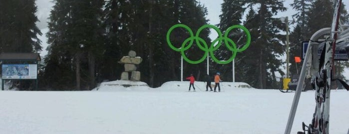 Cypress Mountain Ski Area is one of Sports Arena's.
