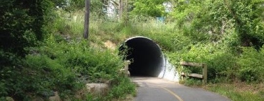 Cape Cod Rail Trail is one of a local's guide to Cape Cod.