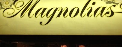 Magnolias is one of Must-visit Bars in Athens.