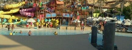 Wild Wadi Water Park is one of Best places in Dubai, United Arab Emirates.