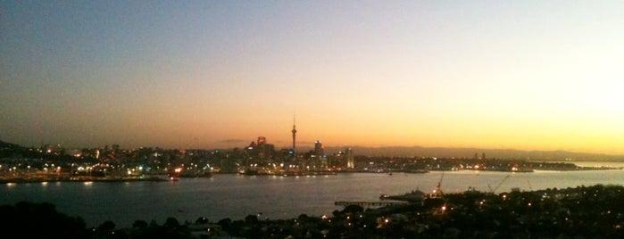 Auckland's Best Free Kid's Activities