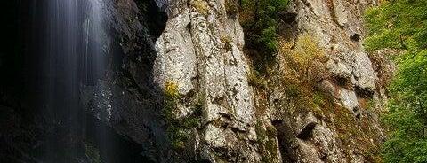 Боянски водопад is one of Waterfalls.
