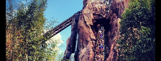Expedition Everest is one of Florida Trip '12.
