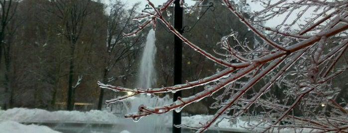 Icepocalypse 2011 is one of Listpocalypse.