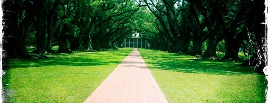 Oak Alley Plantation is one of Best Places to Check out in United States Pt 2.