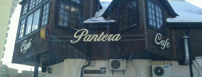 Melnā pantēra is one of Bars and Pubs in Riga.