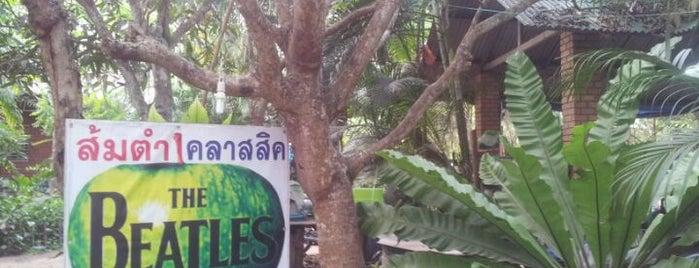 ส้มตำคลาสสิค is one of Chaing Mai (เชียงใหม่).