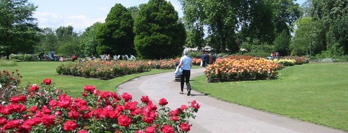 Regent's Park is one of London as a local.
