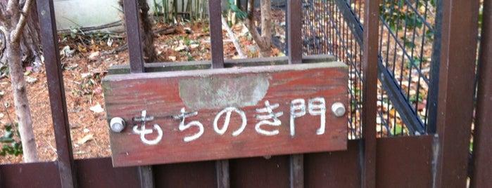 林試の森公園 もちのき門 is one of 公園.