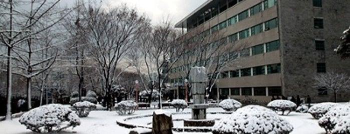 연세대학교 제1공학관 (Yonsei University, College of Engineering Hall 1) is one of 연세대학교, Yonsei Univ..