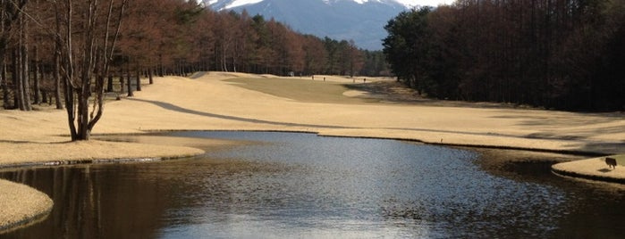 富士桜カントリー倶楽部 is one of Top picks for Golf Courses.
