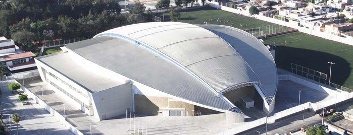 Velódromo Panamericano is one of Instalaciones / Venues.