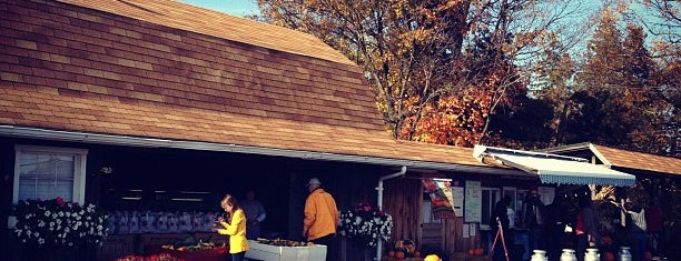 Dressel Farms is one of Things to do in the New Paltz area.